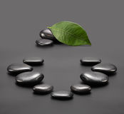 Black stones with leaf Stock Images