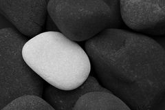 Black stones and a single white stone. Close up of a pile of black stones with a single white stone between them Royalty Free Stock Photos