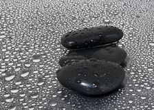 Black stones with water drops Stock Image