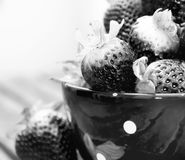 Black strawberries inside a cup. High contract photo of some black strawberries inside a cup stock images