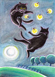 Black Stray Cats Chasing Fireflies. Black stray cats are chasing fireflies in the moonlight Stock Image