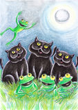 Black Stray Cats With Frogs. Black stray cats and and frogs in the moonlight Stock Images