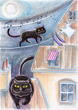 Black Stray Cats On Roofs. Black stray cats walking on roofs at night Stock Images