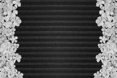 Black stripe pattern background Royalty Free Stock Image