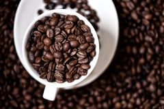 Black, strong aromatic bio african coffee beans in a coffee cup Stock Image