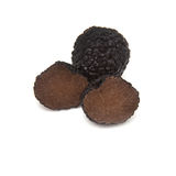 Black summer truffle isolated on a white studio background. Stock Photos