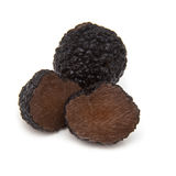 Black summer truffle isolated on a white studio background. Stock Photo