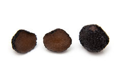 Black summer truffle Stock Photos