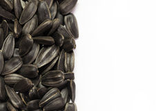 Black sunflower seeds Royalty Free Stock Photography