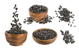 Black sunflower seeds isolated on white background Stock Image