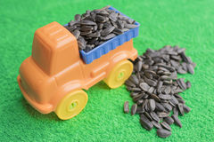 Black sunflower seeds lie in the back of a bright children`s toy car and lie side by side on a green background. stock images