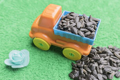 Black sunflower seeds lie in the back of a children`s toy car and are piled alongside on a green background royalty free stock photos