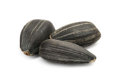 Black sunflower seeds macro Royalty Free Stock Images