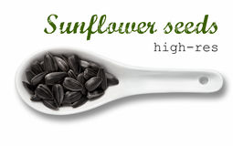 Black sunflower seeds in white porcelain spoon Stock Photos
