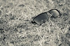Black sunglass kept on a grass surface stock photo. The beautiful black tourist sunglass kept on a grass surface isolated fashion object stock photograph stock image