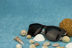 Black sunglasses next to a seashell royalty free stock images