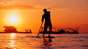 Black sunset silhouette of paddle boarder standing on SUP. Active paddle boarder. Black sunset silhouette of young sportsman paddling on stand up paddleboard Royalty Free Stock Photography