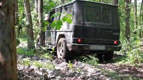 Black SUV got stuck in the mud in the forest, off-road stock video footage