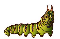 Black Swallowtail caterpillar Stock Photos