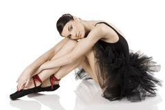 The black swan Royalty Free Stock Photo
