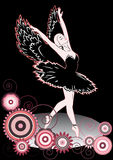 Black swan Royalty Free Stock Images