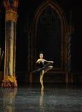 The black swan, Aggie Liya-ballet Swan Lake. In December 20, 2014, Russia's St Petersburg Ballet Theater in Jiangxi Nanchang performing ballet Swan Lake Stock Photography