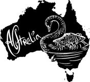 Black swan as Australian symbol Royalty Free Stock Photography