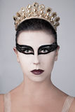 Black Swan Ballerina Stock Images