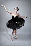Black Swan Ballet Dancer Stock Photo