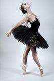 Black Swan Ballet Dancer. Ballerina performing in a black tutu Stock Photography