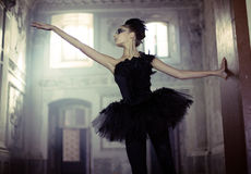 Black swan ballet dancer in move Stock Photo