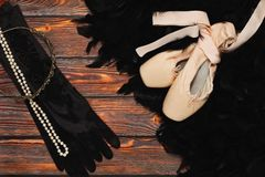 Black swan ballet outfit props. Elements of black swan image - classic russian ballet outfit - pointe hard shoes, black feather boa, high gloves, diadem and Stock Photography