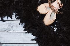 Black swan ballet props Royalty Free Stock Photos