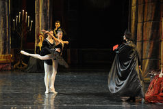 And the black swan dance-The prince adult ceremony-ballet Swan Lake Royalty Free Stock Image