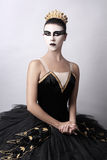 Black Swan - portrait of Ballerina Stock Image