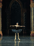 The black swan of rotation-The prince adult ceremony-ballet Swan Lake Stock Image