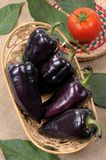 Black sweet pepper Royalty Free Stock Photo