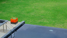 Black swimming pool Royalty Free Stock Image