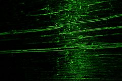 black t?a abstrakcyjna green zdjęcia royalty free