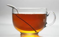 Black tea. Glass mug with black tea Stock Image