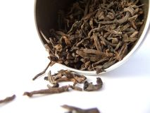 Black tea. Black puerh tea cascading from silver canister Royalty Free Stock Image