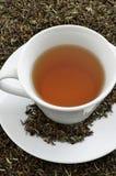 Black tea. A cup of black tea standing on dried black tea leaves Stock Photos