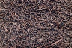 Black tea background Stock Image