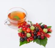 Black tea with berry platter Stock Photos
