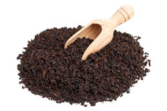 Black tea crop Royalty Free Stock Image