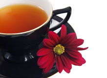 Black tea cup and red flower Royalty Free Stock Photo