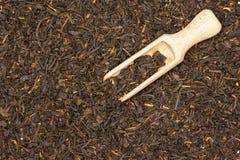 Black tea earl grey royalty free stock images