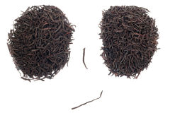 Black tea face Stock Images