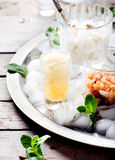 Black tea flavor, milk and lemon granita, sorbet Stock Photos