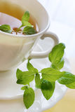 Black tea with a fresh lemon and mint Royalty Free Stock Image